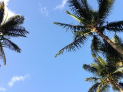 Free Rehab Centers in Hawaii
